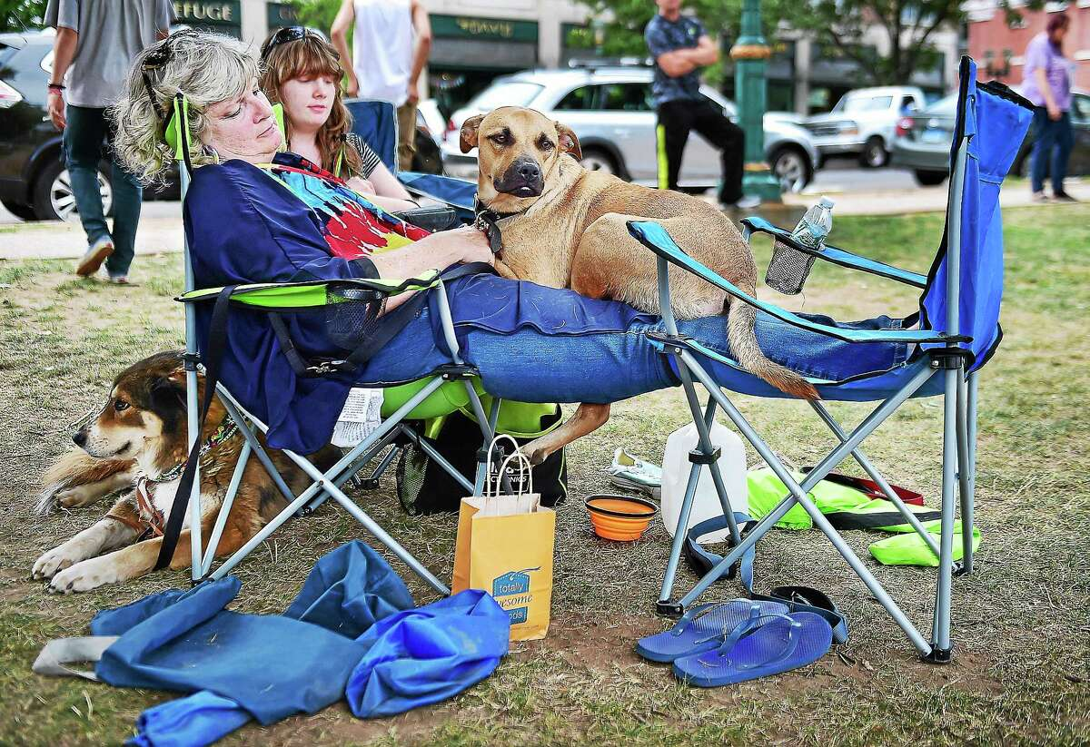 Shelby Turner's dog Bo, a Black Mouth Cur curls up on Shelby's mother, Peggy Turner's lap during the concert by Jen Durkin and the Business at the 3rd annual Woofstock on the Branford Green, Saturday, August 8, 2015. Lola, at left, relaxes behind her owner, Peggy, watching festival-goers pass by.