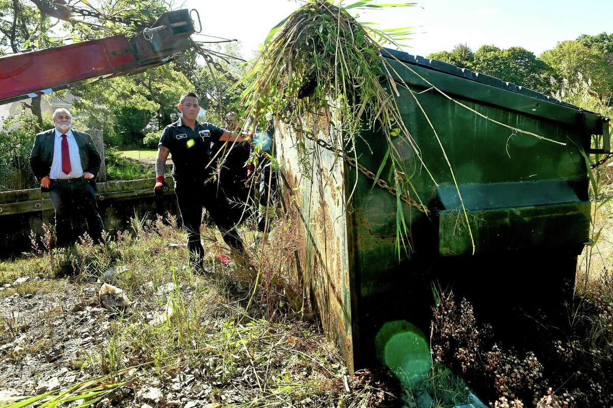 State Rep. Charles J. Ferraro, R-West Haven, left, watches Kylee Yu of Bruneau's Garage help pull a large metal Dumpster out of the Oyster River marsh behind the Family Dollar store near Ocean Avenue in West Haven Wednesday.