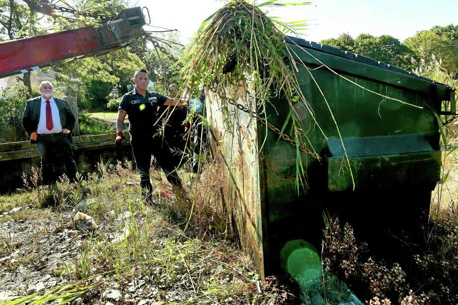 State Rep. Charles J. Ferraro, R-West Haven, left, watches Kylee Yu of Bruneau's Garage help pull a large metal Dumpster out of the Oyster River marsh behind the Family Dollar store near Ocean Avenue in West Haven Wednesday. Photo: Peter Hvizdak — New Haven Register   / ©2015 Peter Hvizdak