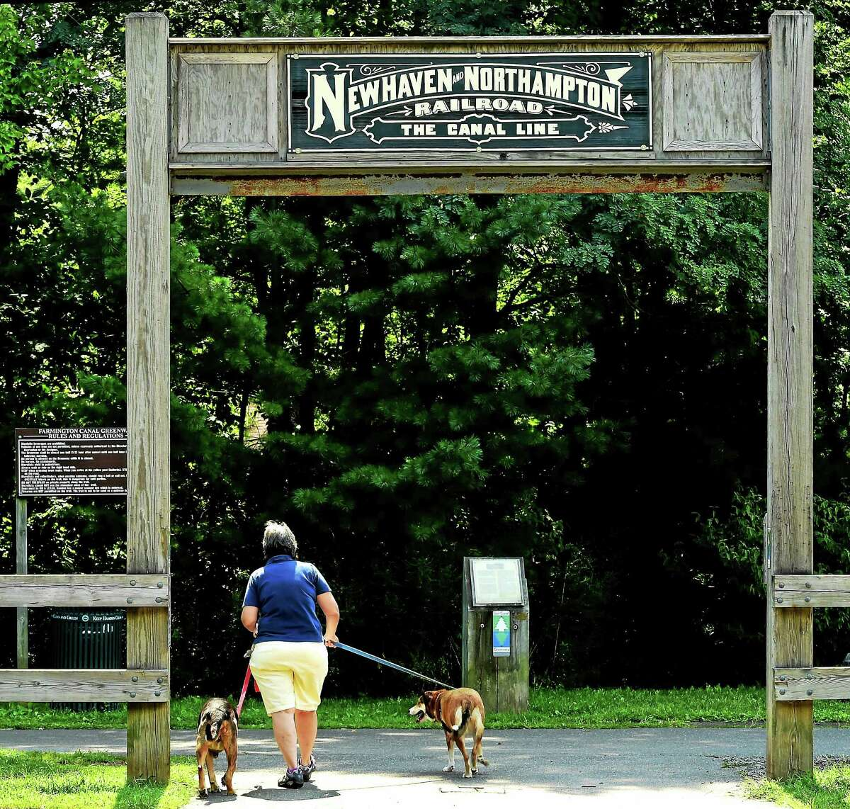 Anne Williamson of Hamden enjoys walking her dogs Bayowoof, left, and Ivy, right, along the Farmington Canal Trail by Sherman Avenue near Whitney Avenue in Hamden.