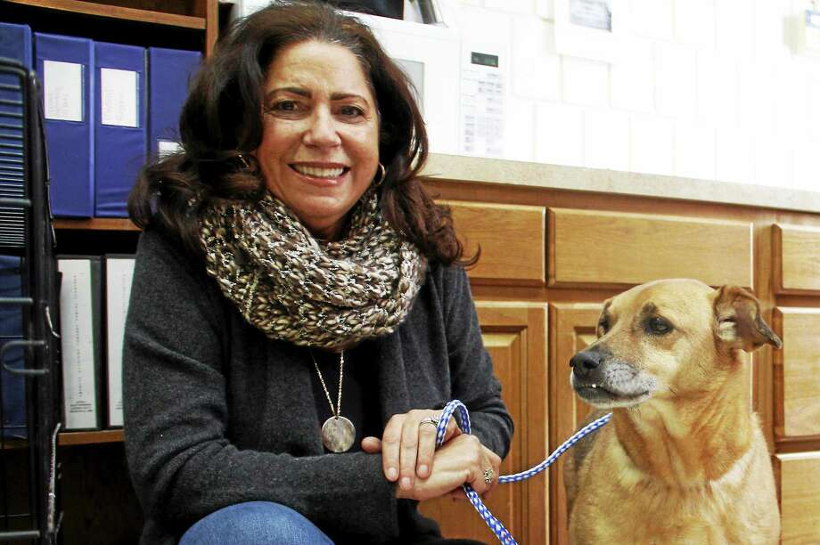 Linda Acevedo and Ralphie, a 6-year-old Shepard mix, inside the East Haven Animal Shelter on Commerce Road on Thursday. Acevedo helped purchased 20 new beds for dogs, including one for Ralphie. Photo: Esteban L. Hernandez — New Haven Register