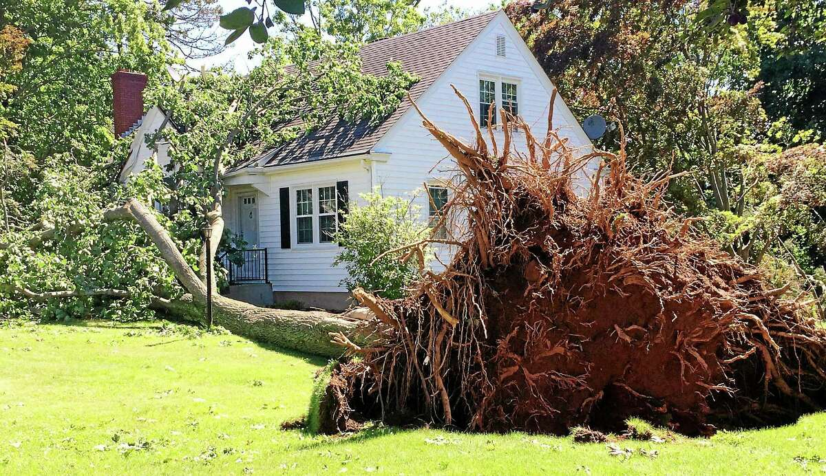 A large tree lay on the grass and roof of a home on Grantham Road in Wallingford late Wednesday morning. Many trees in the neighborhood were taken down by a microburst Tuesday afternoon, of a handful that swept through the state during a series of afternoon storms.