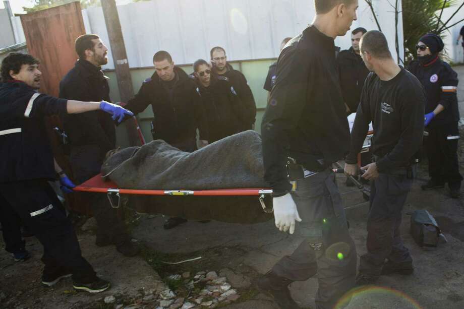 Israeli police officers and medics carry a Palestinian suspected of stabbing people from an area near the attacking site in Tel Aviv, Israel, Wednesday, Jan. 21, 2015. A Palestinian man stabbed at least 11 people on and near a bus in central Tel Aviv on Wednesday, seriously wounding three of them before he was shot and arrested by Israeli police. (AP Photo/Oren Ziv) Photo: AP / AP