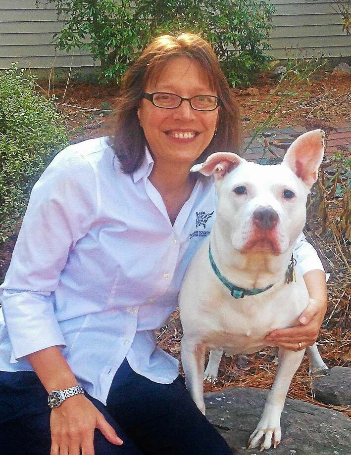 Annie Hornish, the American Humane Society's state director for Connecticut, pictured with her shelter-adopted dog Tofu. Hornish said the new laws are working but added that some pet shops are still dealing with alleged puppy mills. (Contributed) Photo: Journal Register Co.