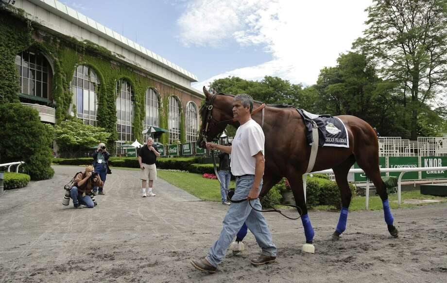 Kentucky Derby and Preakness Stakes winner American Pharoah will try for the Triple Crown in Saturday's 147th running of the Belmont Stakes. Photo: Julie Jacobson — The Associated Press   / AP