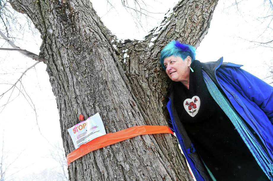 (Arnold Gold-New Haven Register)  Amie Ziner stands next to a tree in front of her house on Easy Street in Milford on 1/30/2015 that is slated to be cut down by United Illuminating. Photo: Journal Register Co.