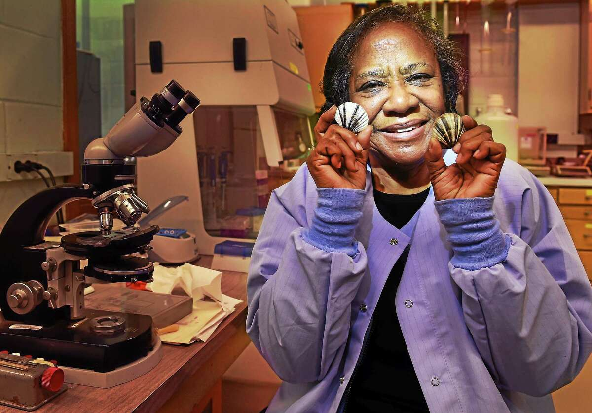 Dr. Sheila Stiles Jewell, research geneticist at the NOAA Northeast Fisheries Science Center , Aquaculture and Enhancement Division lab in Milford. Stiles is holding East Coast Bay Scallops that the lab is breeding and restoring to the local population in the hope of building the domestic cultivation of bay scallops.