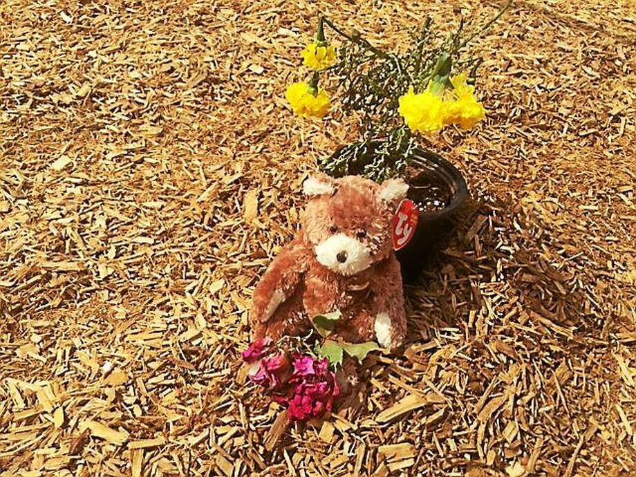 A bear and marigolds were placed under the swing where JiíAire was found dead May 22 in Maryland. Photo: Washington Post Photo/Deneen L. Brown   / THE WASHINGTON POST