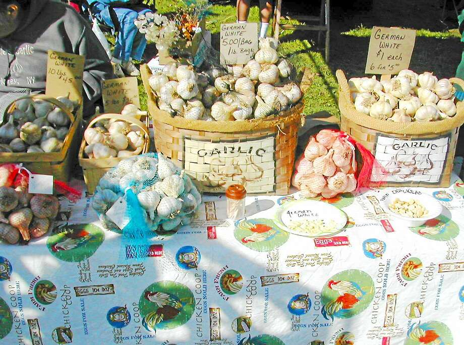 The Connecticut Garlic & Harvest Festival in Bethlehem Oct. 11 and 12 features a variety of talks, demos, samples and vendors as well as other seasonal crops for sale. Photo: Connecticut Garlic & Harvest Festival
