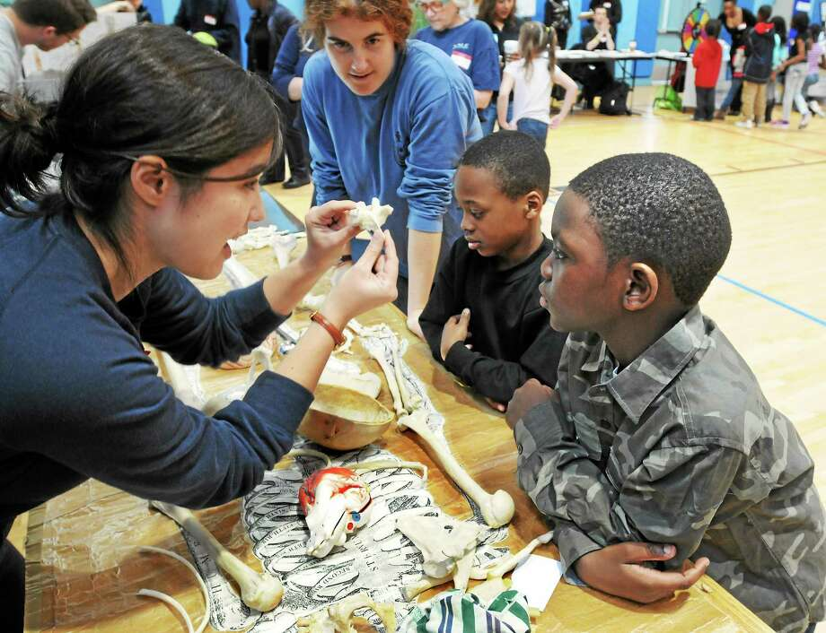 (Mara Lavitt ó New Haven Register)   March 29, 2014 New Haven  The Newhallville Community Resilience Team hosted Get Healthy Newhallville at Lincoln-Bassett School in New Haven. Yale School of Nursing graduate student Amelia Goff shows Clarence Atkinson and Mekhi McCray, both age 8 and both of New Haven, the various parts of a skeleton model and taught them where on their body particular bones were.  mlavitt@newhavenregister.com Photo: Journal Register Co. / Mara Lavitt