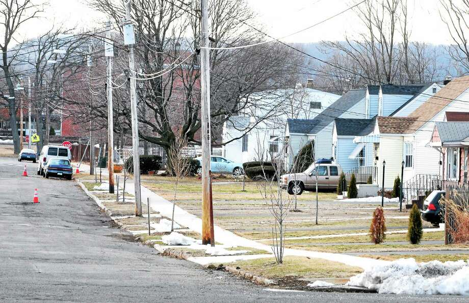 (Arnold Gold-New Haven Register)  Newly planted trees dot the landscape on Bryden Terrace in this photograph on 3/14/2014. Photo: Journal Register Co.