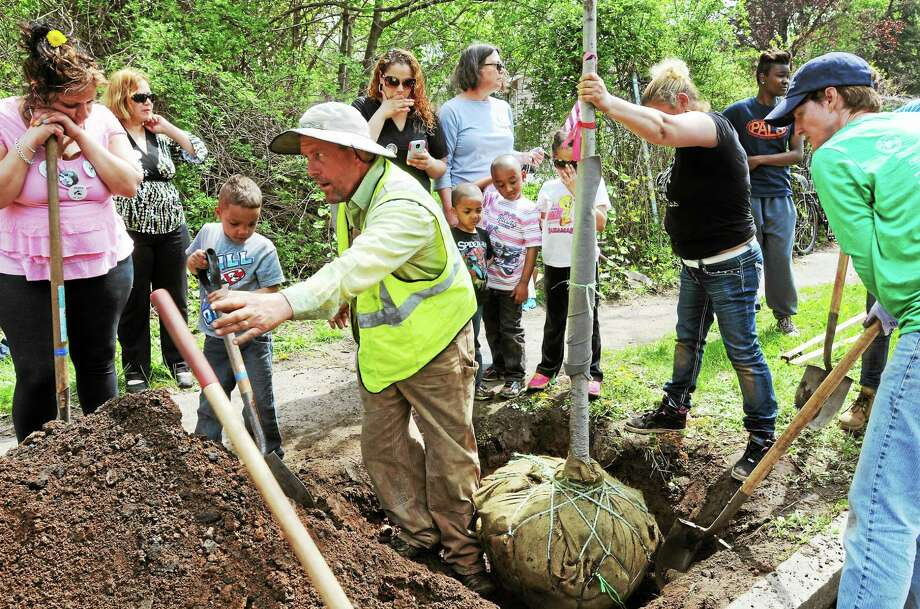 Friends and family plant a tree in honor of Javier Martinez May 10 near the spot where he was killed. Photo: (Melanie Stengel — New Haven Register)