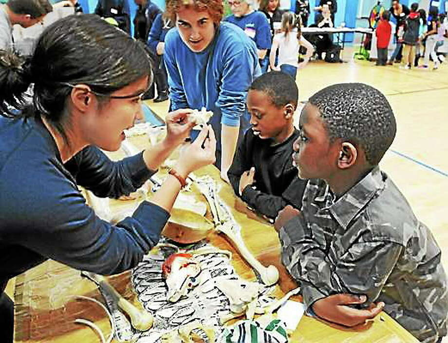 File photo: Newhallville Community Resilience Team held Get Healthy Newhallville at Lincoln-Bassett School in New Haven. Photo: (Mara Lavitt - New Haven Register)