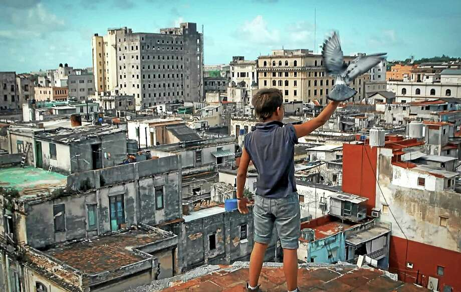 """NEFIAC photo   The story of a boy, his drug-addicted mother and his pigeons, the Cuban film """"Behavior,"""" will be shown Tuesday, the opening night of the New England Festival of Ibero American Cinema. Photo: Journal Register Co."""