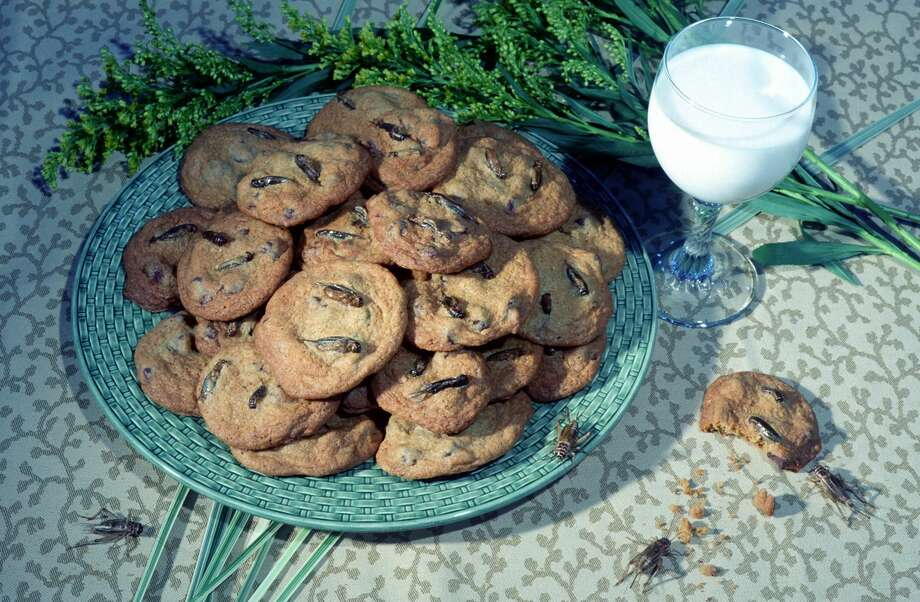 This photo provided by the Audubon Nature Institute shows chocolate chirp cookies, with crickets. (AP Photo/Audubon Nature Institute) Photo: AP / Audubon Nature Institute