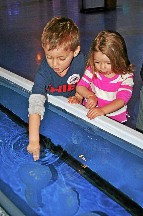 Photo: Maritime Aquarium At Norwalk
