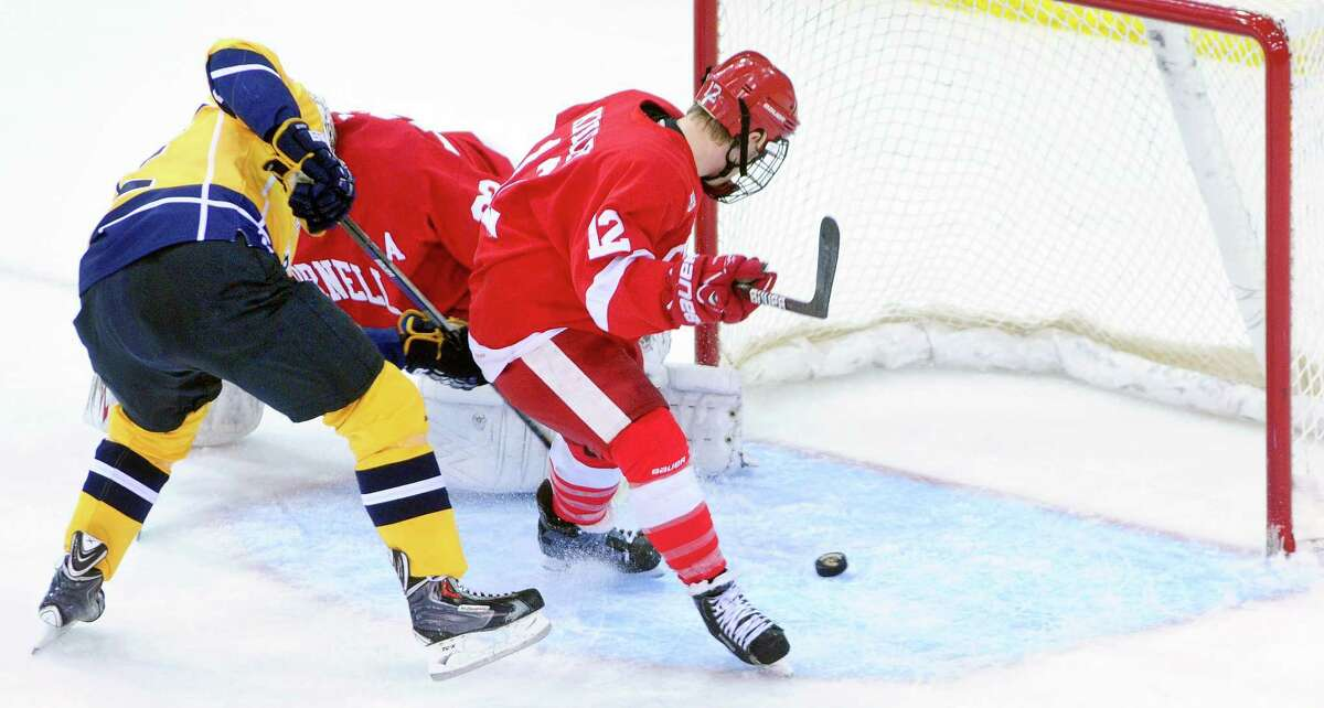 Quinnipiac's Bryce Van Brabant, left, watches the Bobcats' lone goal glide into the net during Friday's loss to Cornell.