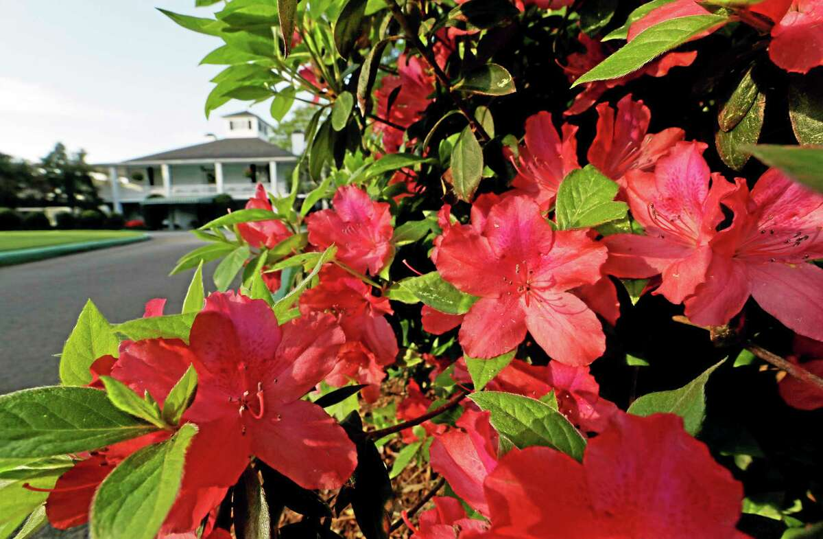 Azaleas bloom near the Augusta National Golf Course clubhouse on Wednesday in Augusta, Ga., site of the Masters.