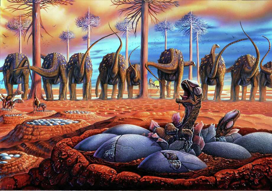 IMAGE COURTESY YALE PEABODY MUSEUM    In Luis Rey's illustration, herds of female sauropod dinosaurs called titanosaurs gathered at traditional nesting grounds some 80 million years ago in what is now Patagonia, Argentina.  They laid their eggs in uniformly spaced nests made by scraping and shaping depressions in the soft mud, then covered the eggs and left them to incubate in the warm sun.  Although adults may have guarded the outskirts of the nesting ground, newly hatched titanosaur young probably looked after themselves.  In future breeding seasons, female titanosaurs would return again and again to this same location to lay their eggs, a behavior called site fidelity. Photo: Journal Register Co. / StoneCompany.com, Inc.