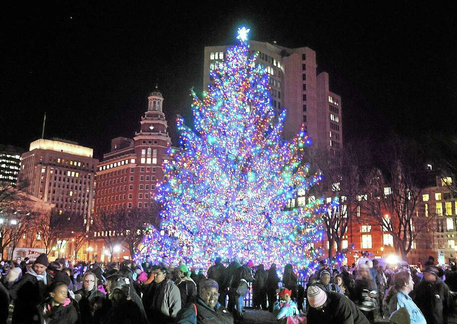 File photo: Tree on  New Haven Green. Photo: Journal Register Co.