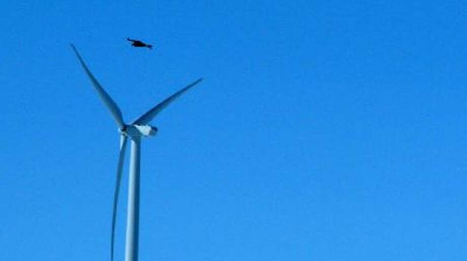 A golden eagle flies over a wind turbine on Duke energy's top of the world wind farm in Converse County, Wyo. For the first time, the Obama administration is taking action against wind farms for killing eagles.