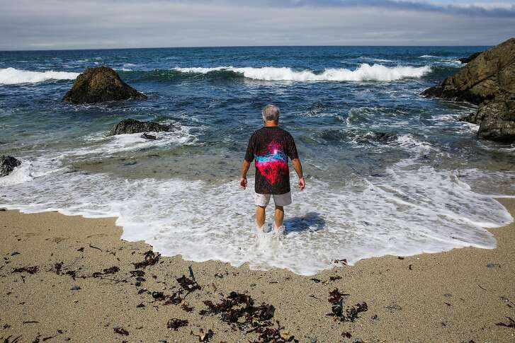 Richmond Anderson, of Auburn, cools off in the ocean on Bodega Head Beach in Bodega Bay, Calif., on Tuesday, July 25, 2017.