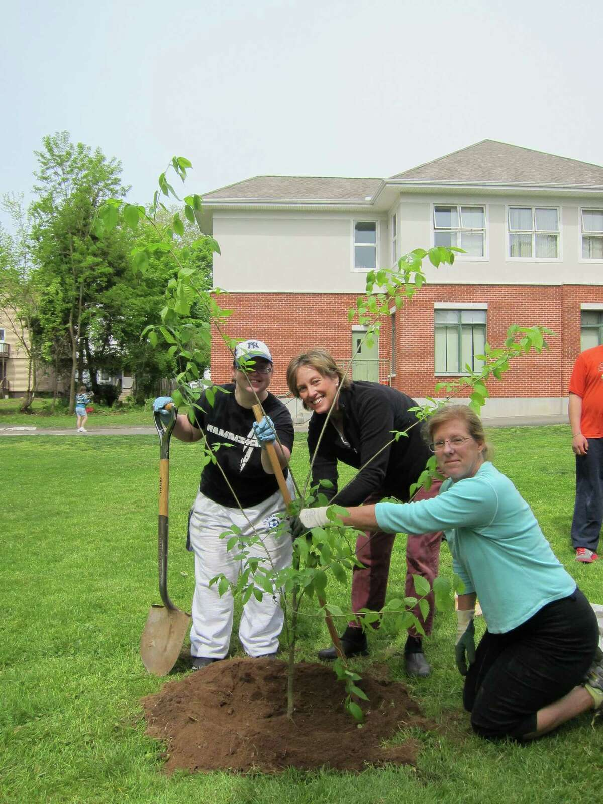 Chapel Haven recently received three American elm trees from Garden Club of New Haven. From left to right helping to plant one of the trees is Chapel Haven community member Megan Faitell, Garden Club of New Haven member Debbie Edwards and member Amy Estabrook. Photo by Catherine Sullivan-DeCarlo