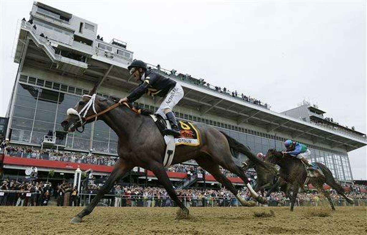 Oxbow, ridden by jockey Gary Stevens, wins the 138th Preakness Stakes horse race at Pimlico Race Course, Saturday, May 18, 2013, in Baltimore. (AP Photo/Matt Slocum)