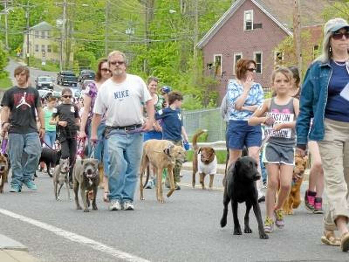 Ryan Flynn/Register Citizen - Winsted residents came out in droves to join the 77th annual parade, bringing their pets for a walk down main street.