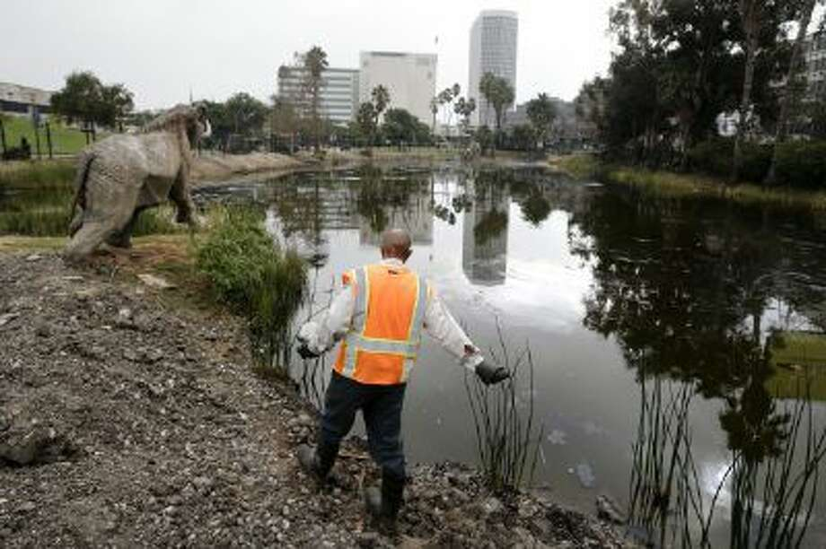 Victor Ball sprinkles mosquito repelling granules along Lake Pit outside the George C. Page Museum at the La Brea Tar Pits on Wednesday, Oct. 23, 2013, in Los Angeles.