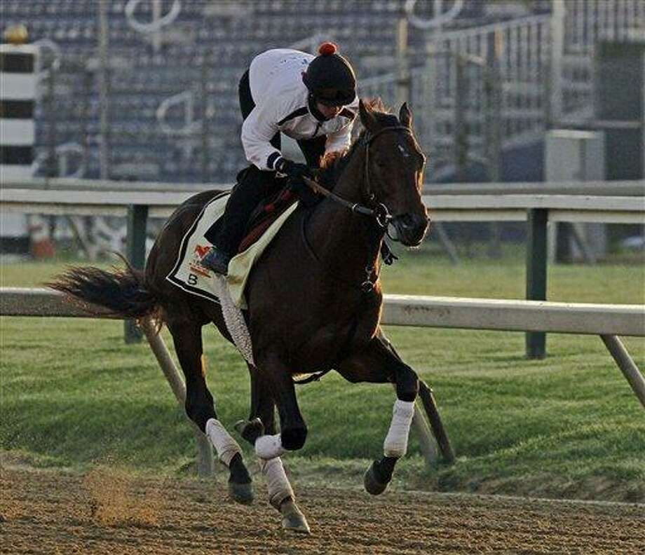 Exercise rider Jennifer Patterson gallops Preakness Stakes favorite and Kentucky Derby winner Orb at Pimlico Race Course Friday, May 17, 2013 in Baltimore. The Preakness Stakes horse race is scheduled for Saturday. (AP Photo/Garry Jones) Photo: AP / FR50389 AP