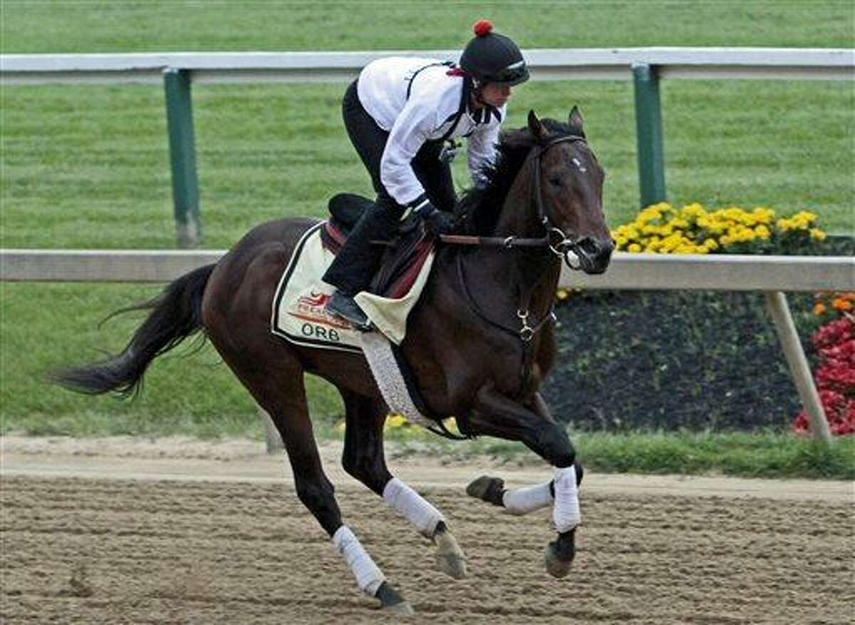 Exercise rider Jenn Patterson gallops Kentucky Derby winner and Preakness Stakes favorite Orb at Pimlico Race Course in Baltimore, Thursday, May 16, 2013. (AP Photo/Garry Jones)