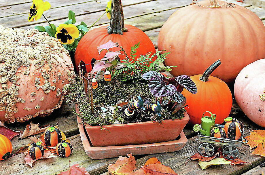 Natureworks hosts a Halloween-themed Fairy Garden workshop. Photo: Contributed