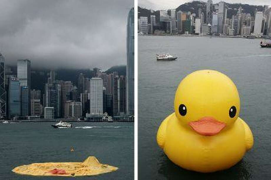 The duck before and after.