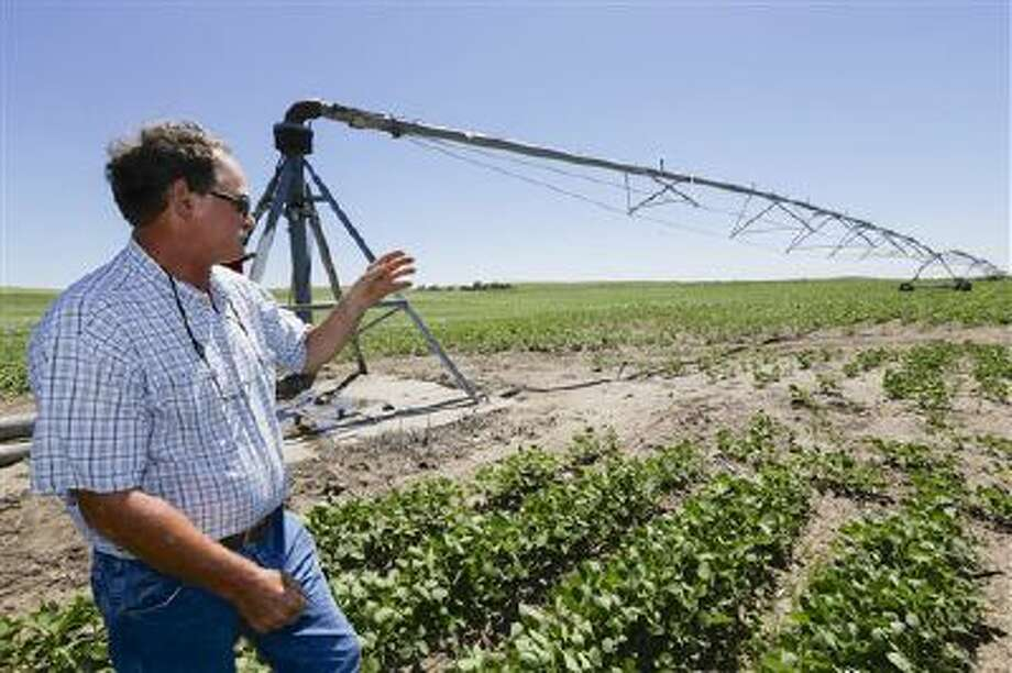 In a June 28, 2013, photo farmer Jim Carlson of Silver Creek, Neb., stands in a field of soy beans near a pivot irrigator. A report released Tuesday July 23, 2013 for the Nebraska Farm Bureau says irrigation was worth $11 billion to the state in agricultural production during the drought last year. Photo: AP / AP