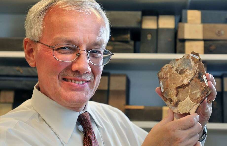 """New Haven-- Peter Crane, author of the book """"Ginkgo"""" shown with a fossilized Ginkgo leaf in the specimen room at the Yale Peabody Museum. Photo-Peter Casolino 03/04/12"""