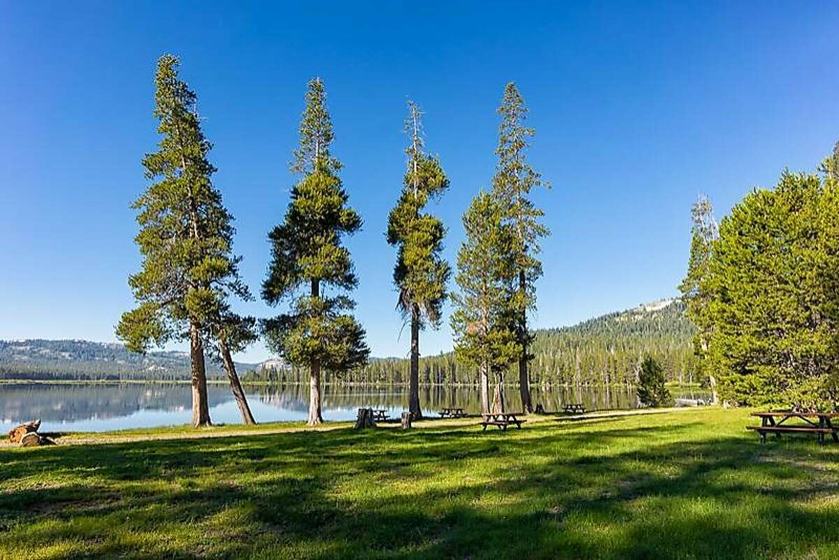 The shoreline meadow and picnic sites at Webber Lake, which will be opened to the public for camping starting August 1 after being off-limits for the past century