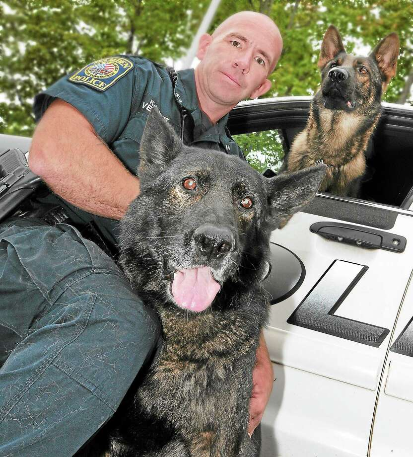 "(Peter Hvizdak — Register)Hamden Police officer Jason Venditto, a K-9 handler with his retired K-9 German Sheperd ""Titan"", below, and his new partner K-9 German Sheperd ""Viking"" at Hamden Police headquarters Thursday, October 10, 2013 Photo: New Haven Register / ©Peter Hvizdak /  New Haven Register"
