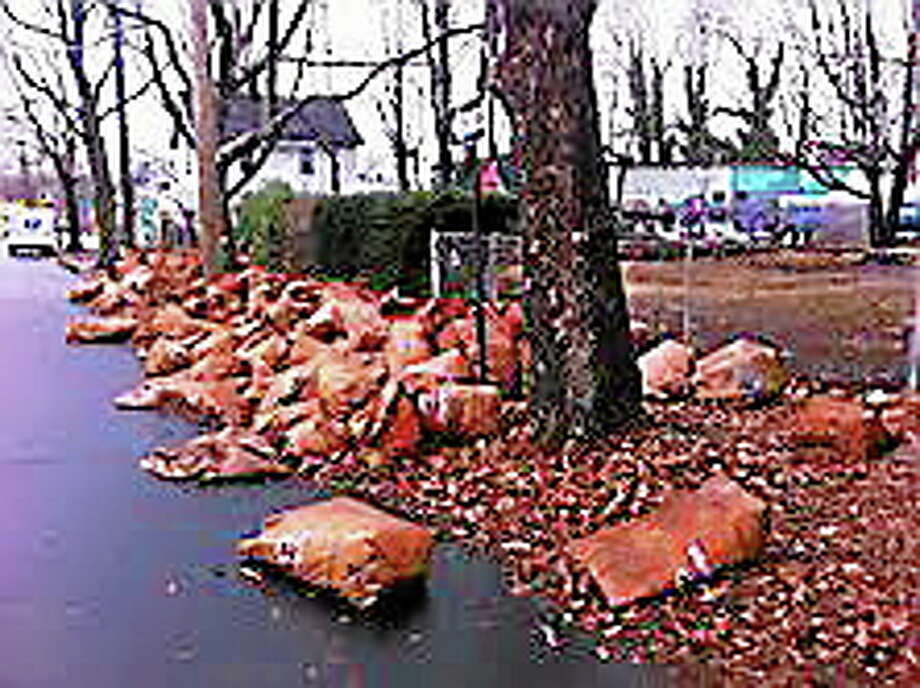 Bags of leaves line Goodrich Street waiting for pick up. Contributed photo Photo: Journal Register Co.