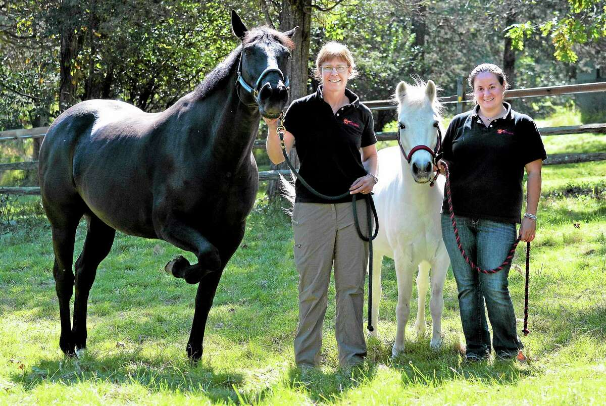 Claire Wiseman, left, a Yale Ph.D., uses animals at Skye Farm in Bethany for her therapy sessions. With her is Niki Cogliano, an equine specialist. The horses are Makaday, left, and Zippy.