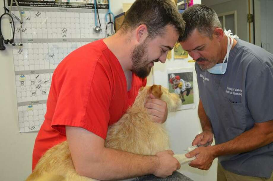 Rachel Murphy/Rome Observer Michael Jones, left, a veterinarian technician, and his father, Michael Jones, a veterinarian, care for Toby, an adoptable 1-year-old terrier-lab mix at Happy Valley Animal Hospital in Verona