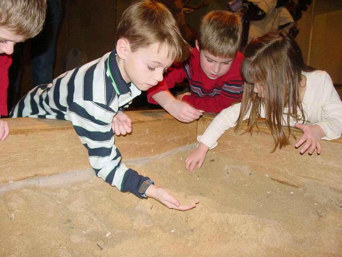 Yale Peabody Museum photo: Dig for dinosaur fossils at the Yale Peabody Museum on vacation.