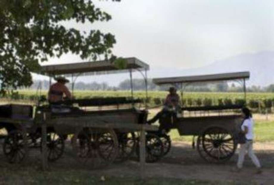 Horse-drawn carriages and their drivers wait for groups of tourists on the grounds of the Viu Manent winery in Chile's Colchagua Valley in March 2013. (Tim O'Rourke/Bay Area News Group) Photo: Tim O'Rourke/Bay Area News Group / Tim O'Rourke/Bay Area News Group