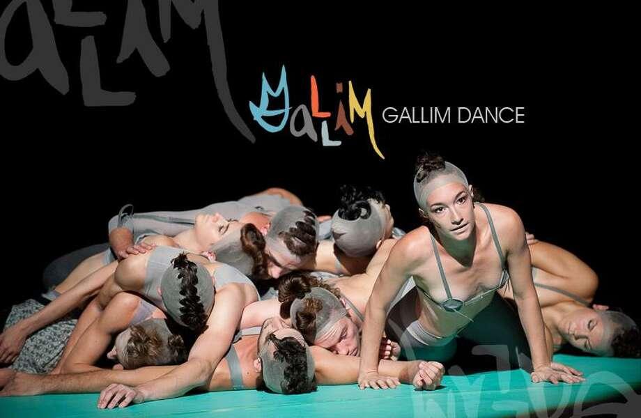 www.gallimdance.com