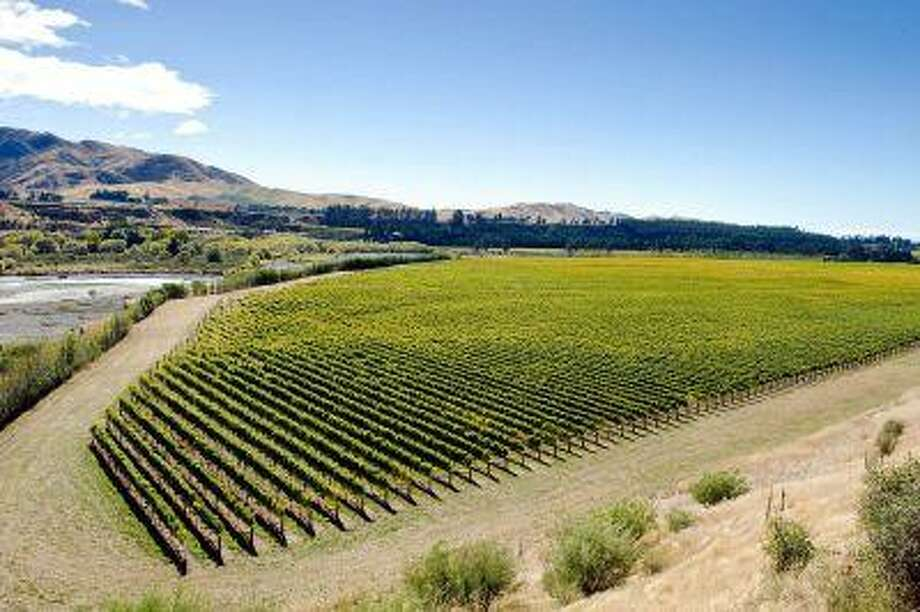 Researchers say wine-making areas may decline from Bordeaux to Australia as climate change prompts a shift to higher latitudes and elevations in New Zealand and the Northern Hemisphere. Shown is Terra Vitae Seddon Vineyards on the Awatere River in Marlborough, New Zealand, in 2010.