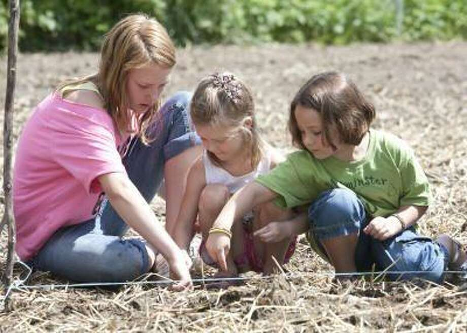 Students help plant a garden at the Westminster School.