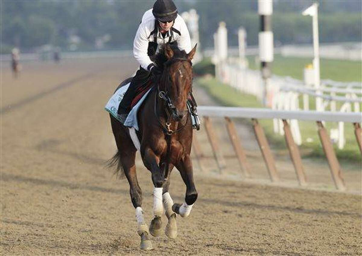 Kentucky Derby winner Orb gallops on the track at Belmont Park, with exercise rider Jennifer Patterson up, during a morning workout Thursday, June 6, 2013 in Elmont, N.Y. Orb is entered in Saturday's Belmont Stakes horse race. (AP Photo/Mark Lennihan)