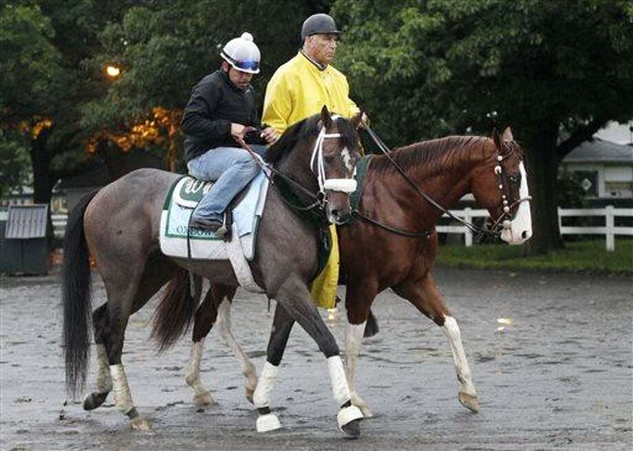 Preakness winner Oxbow, left, is guided by trainer D. Wayne Lukas, right, to his barn at Belmont Park following a morning workout Friday, June 7, 2013 in Elmont, N.Y. Oxbow is entered in Saturday's Belmont Stakes horse race. (AP Photo/Mark Lennihan) Photo: AP / AP
