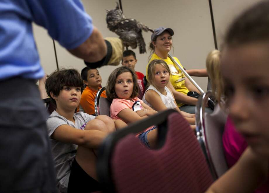 Children react to seeing an eastern screech owl up close during the Birds of Prey presentation by the Wildlife Recovery Association held at the Greendale Senior Center in Shepherd on Wednesday, July 26, 2017. Photo:  (Josie Norris/for The Daily News)