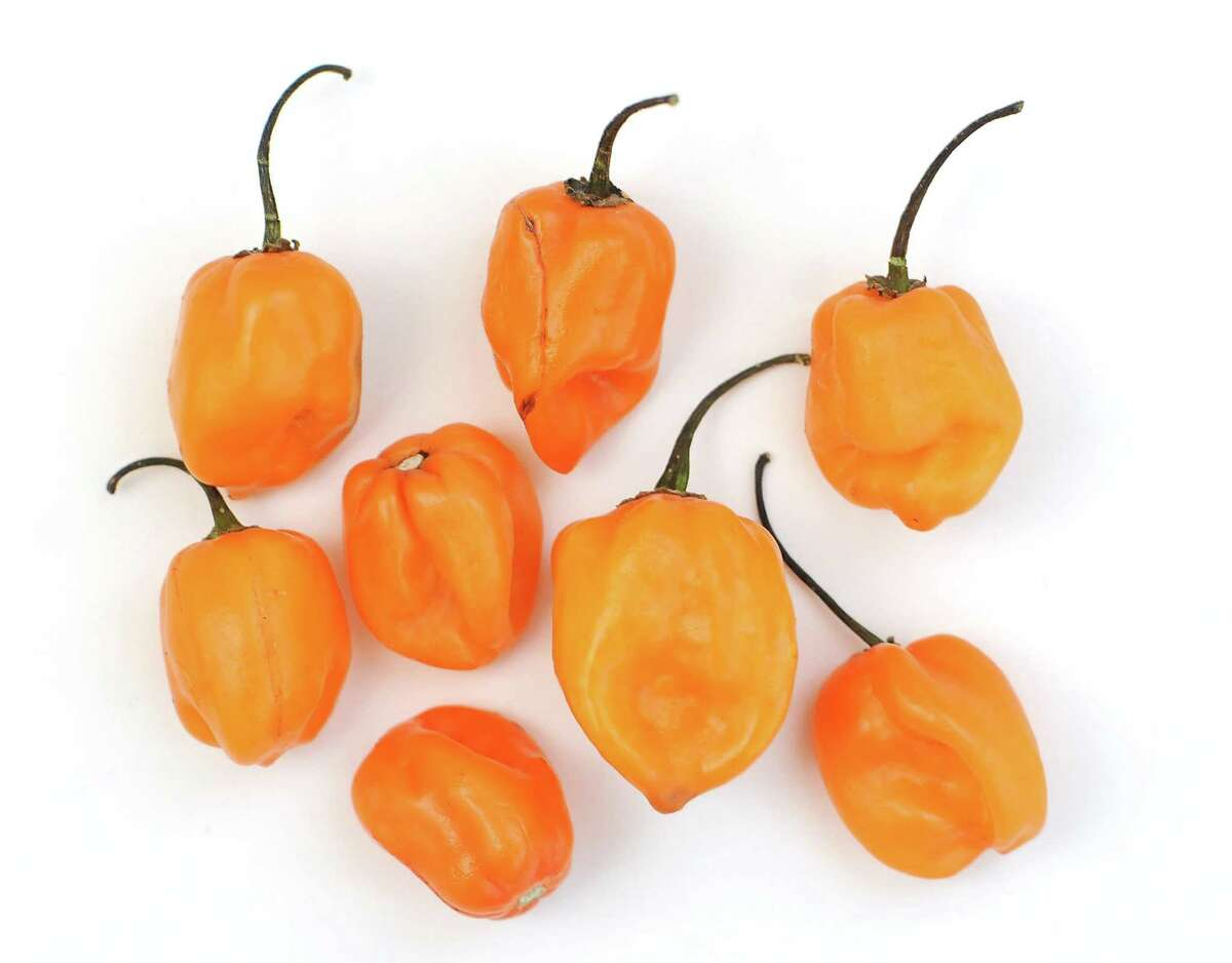 Habanero chiles are among the hottest commonly available varieties and have an unmistakable aroma.